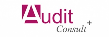 AUDIT CONSULTING+